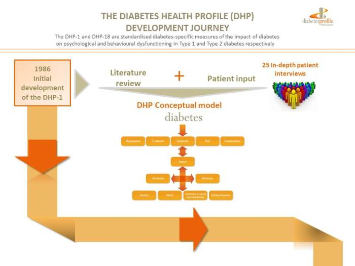dhp development journey